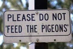 Non alimenti prego i piccioni Fotografia Stock