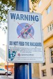 Non alimenti a scimmie il segno Fotografie Stock Libere da Diritti