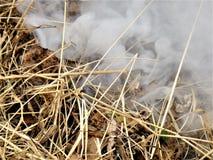 Non c'è fumo senza fuoco Fotografie Stock Libere da Diritti