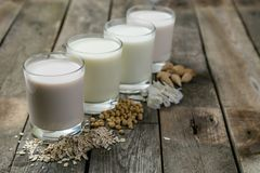 Non dairy milk concept. Milk alternatives in glasses Stock Photos