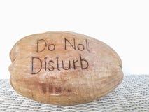 Non disturbi il messaggio sulla noce di cocco Shell Fotografia Stock