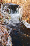 Non-freezing creek Stock Images
