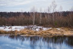 Non-freezing river on winter forest backgrounds. Non-freezing river on winter forest background Royalty Free Stock Photo