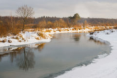 Non-freezing river on winter forest backgrounds. Non-freezing river on a winter forest backgrounds Royalty Free Stock Images