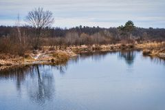 Non-freezing river on winter forest backgrounds. Non-freezing river on winter forest background Stock Photo