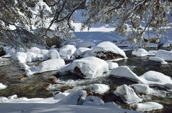 Non-freezing river in the winter mountain Royalty Free Stock Image