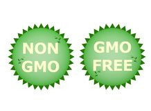 Non GMO. Two logos non gmo and gmo free vector illustration