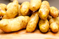 Non gmo fingerling potatoes Royalty Free Stock Images