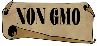 NON GMO on old rolled paper Royalty Free Stock Photography
