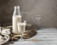 Non lait d'avoine de laiterie pour le régime de vegan photos libres de droits