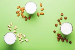 Non lait sans lactose de journal intime pour la nutrition saine et diététique photo libre de droits