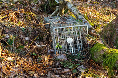 Small mammal trap Royalty Free Stock Image