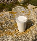 The non-permanent glass with milk at stone Stock Images