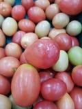 Non-toxic tomatoes nourish the body. Non-toxic tomatoes nourish the body royalty free stock photography