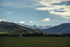 Non urban grassland against snow mountain at New Zealand. Non urban grassland against snow mountain at New Zealand stock photo