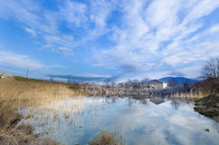 Non urban landscape,small lake reflection. In the Swamp with rushes and old house on the clear cloudy blue sky royalty free stock photo