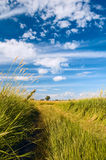 Non urban scene with country road. And beautyful clouds stock images