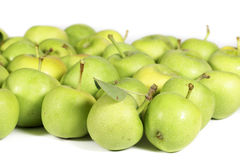 Noncommercial variety of green apples on white Stock Photography