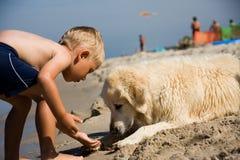 игры собаки мальчика пляжа Стоковые Фотографии RF