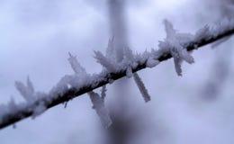 冰 免版税图库摄影