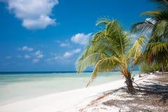 热带海岛天堂 免版税库存图片