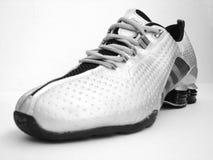 黑色鞋子炫耀白色 库存图片