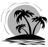 δέντρα ήλιων φοινικών Στοκ εικόνες με δικαίωμα ελεύθερης χρήσης