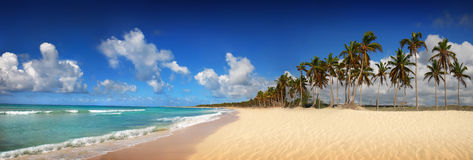 пристаньте доминиканскую панорамную республику к берегу тропическую Стоковая Фотография