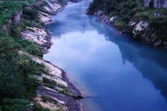 使河环境美化 库存照片