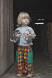 котята удерживания мальчика Стоковая Фотография