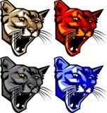 美洲狮徽标吉祥人豹 免版税库存照片