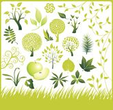 收集设计要素绿色集 库存图片