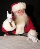淘气好的圣诞老人 库存照片