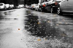汽车雨 免版税库存照片
