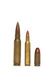 弹药筒查出红色三被打翻的跟踪程序 免版税库存照片