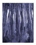 μπλε δάσος Στοκ Φωτογραφίες