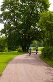 自行车骑士一些 库存照片