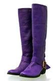 启动紫色 免版税库存照片