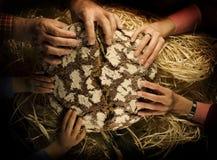 делить людей хлеба Стоковая Фотография RF