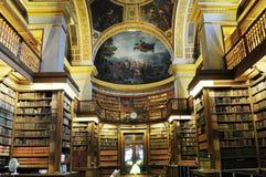 法国头等微型的里面精采图书馆 免版税库存图片