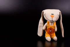 滑稽的野兔玩具 库存图片