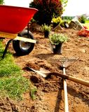 χορτοτάπητας κήπων Στοκ εικόνα με δικαίωμα ελεύθερης χρήσης