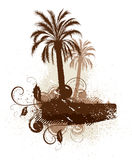 изолированные пальмы листьев Стоковое Фото