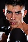 拳击手讲西班牙语的美国人 免版税库存图片