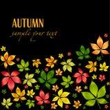 秋天背景五颜六色的叶子向量 免版税库存照片