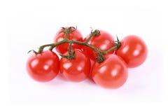 томат Стоковое Изображение RF