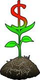 символ роста доллара Стоковая Фотография RF