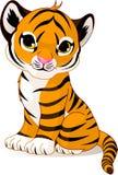 逗人喜爱的虎犊 免版税库存图片