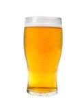 啤酒品脱 图库摄影