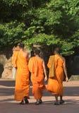 монахи Стоковые Фото